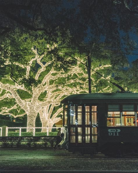 Celebration in the Oaks | Holidays New Orleans Style